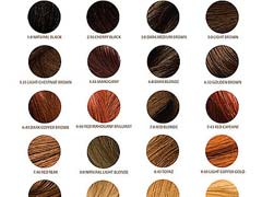 Top 10 Professional Hair Color Brands | Hair Care Mania